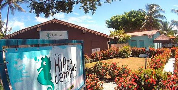 O Projeto Hippocampus – Biologia, cultivo e conservação de cavalos-marinhos em porto de galinhas