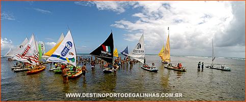 Conheça as Piscinas Naturais de Porto de Galinhas